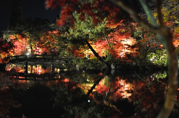永観堂ライトアップ