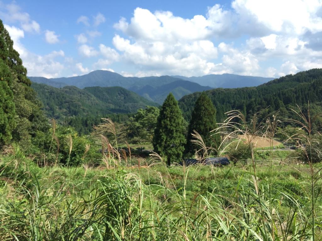 村岡ダブルフル44km、2つ目の山頂
