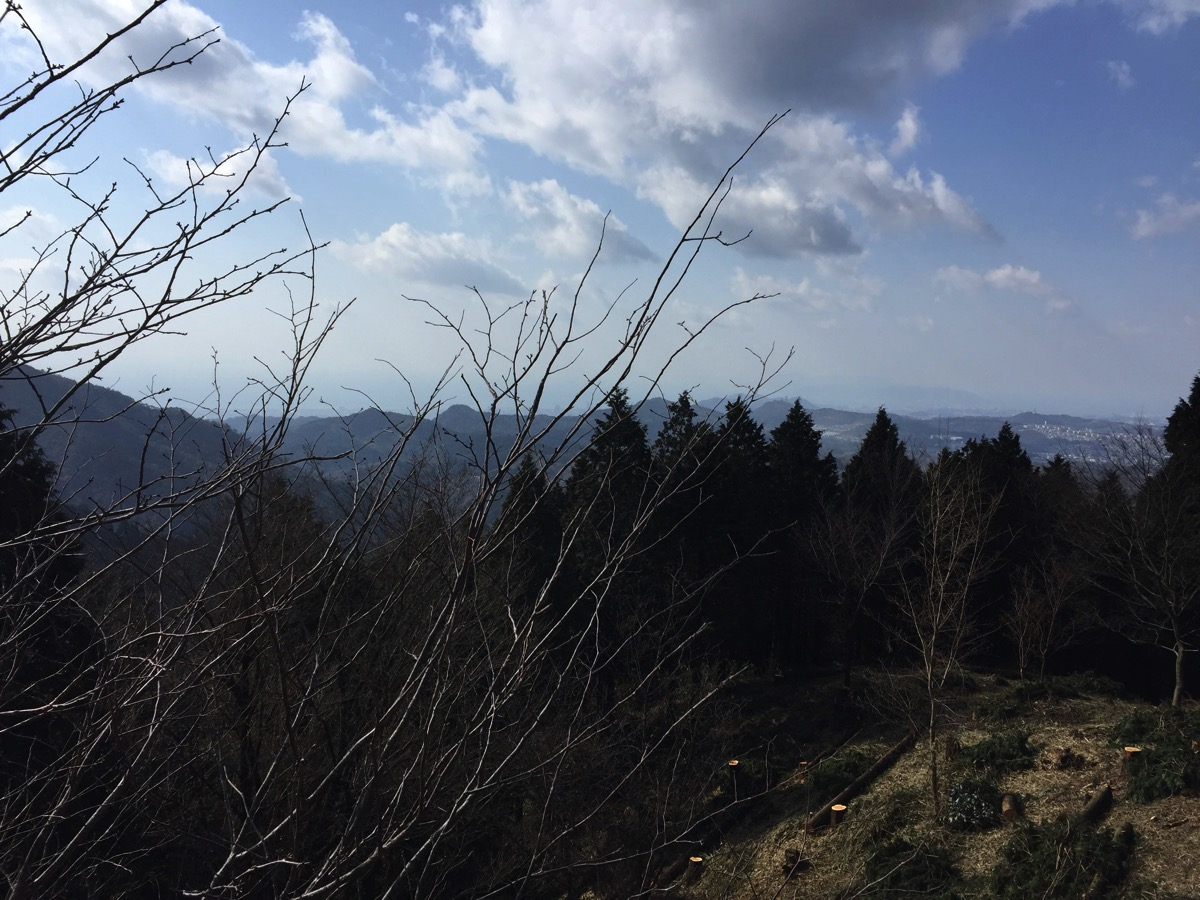 六甲の石楠花山
