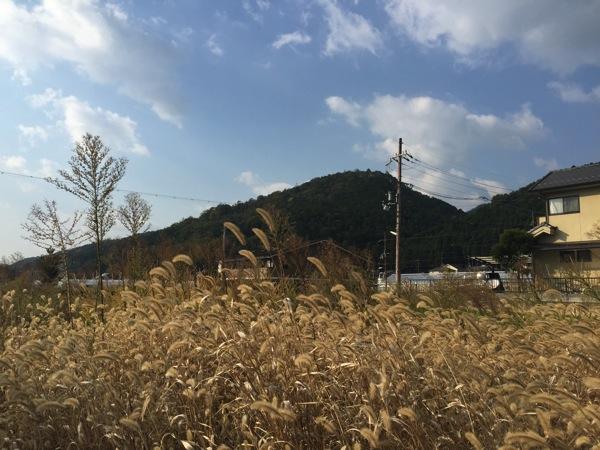 「京都フィールドアーチェリー」を体験。ついでに山間を20kmランニング!
